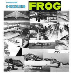 Horton Ho229 With FROG