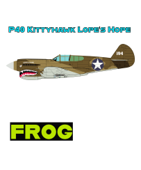 P40 US Desert Camo Lopes Hope For T-Shirt With FROG