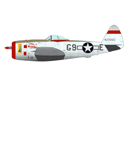 P47D Thunderbolt-01
